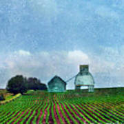 Rural Farm Art Print