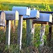Rural Mail Boxes In Color Art Print