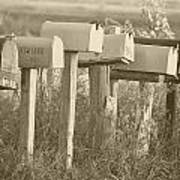 Rural Mail Boxes In Sepia Art Print