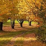 Rural Scene In Autumn Art Print