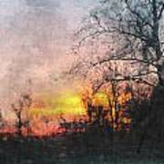 Rural Sunset  Art Art Print