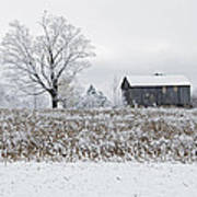 Rural Winter Art Print