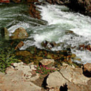 Rushing Water Glen Alpine Creek  Art Print