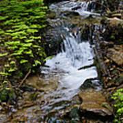 Rushing Water On Mt Spokane Art Print