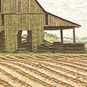 Rustic Barn And Field Rows Art Print