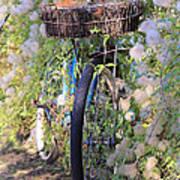 Rustic Bicycle Art Print