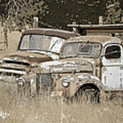 Rustic Trucks Art Print