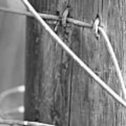 Rustic Wire Art Print