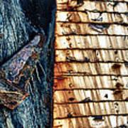 Rusting Boat Anchor Art Print