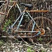 Rusty Wheel Of Bicycle Art Print