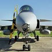 Saab Jas39d Gripen Art Print