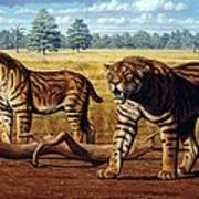 Sabre-toothed Cats, Artwork Art Print