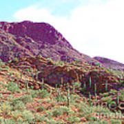 Saguara National Forest In Arizona Art Print