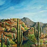 Saguaro Canyon Art Print