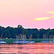 Sail Boats Pretty In Pink  Art Print