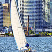 Sailboat In Toronto Harbor Art Print