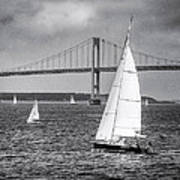 Sailboats Near Bridge Art Print