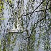 Sailing Boat Behind Tree Branches Art Print