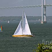 Sailing Newport Art Print