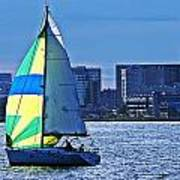 Sailing On Boston Harbor Art Print
