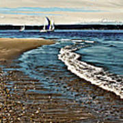 Sailing The Puget Sound Art Print