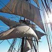 Sails And Sunshine Art Print by L Jaye Bell
