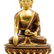 Sakyamuni Buddha Art Print