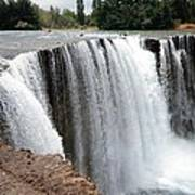 Salto Del Laja - Waterfall Art Print