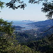 San Francisco As Seen Through The Redwoods On Mt Tamalpais Art Print