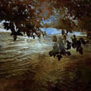 Sanctuary By The River Art Print
