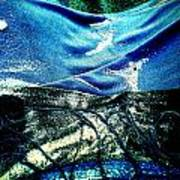 Sand And Shells On Dress Art Print