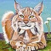 Sassy Lynx Art Print