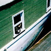 Sausalito Boat Cat Art Print