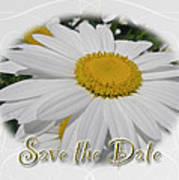 Save The Date Greeting Card - White Daisy Wildflower Art Print