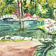 Sayen Pond Art Print