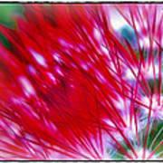 Scarlet Sabers Art Print