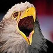 Screaming Eagle I Art Print