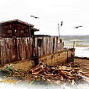 Sea Shanty Art Print