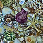 Sea Treasure - Square Format Art Print