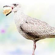 Seagull Steeling Food Art Print
