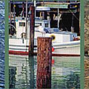 Seagull Triptych Art Print