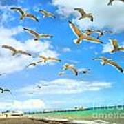 Seagulls At Worthing Sussex Art Print