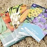 Seed Packs Art Print