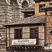 Segovia Spain Art Print