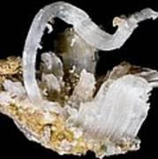 Selenite Crystals Art Print