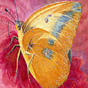 Self Esteem Butterfly Art Print