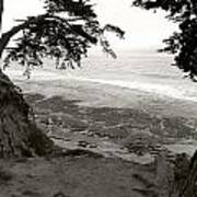 Sentinels View Of The Ocean Black And White Art Print