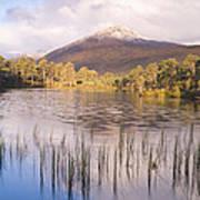 Sgurr Na Lapaich From Loch Salach A Ghiubhais In Glen Affric Art Print