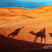 Shadows Of Desert Art Print