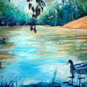 Shady Springs Pond Print by Gretchen Allen